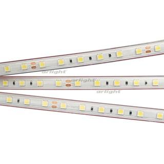 Лента RTW 2-5000PS 24V White6000 2x (5060, 300 LED, LUX) (ARL, 14.4 Вт/м, IP67) - фото 54724