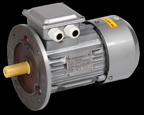 Электродвигатель асинхронный трехфазный АИР 90LA8 380В 0,75кВт 750об/мин 3081 DRIVE IEK - фото 59855