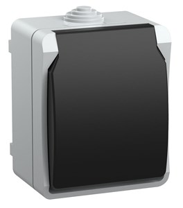 Розетка 1-местная для открытой установки РСб20-3-ФСр с заземляющим контактом ФОРС IP54 IEK