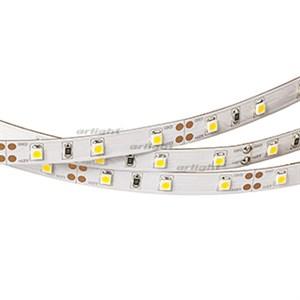 Лента RT2-3528-60-12V White (300 LED) (Norm, 4.8 Вт/м, IP20)