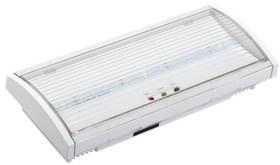 Светильник аварийный ДПА 5030-3 постоянного действия NI-CD 3ч IP20 IEK